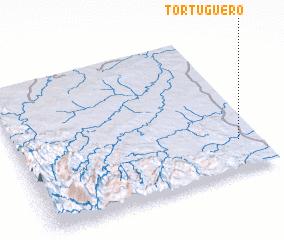 3d view of Tortuguero