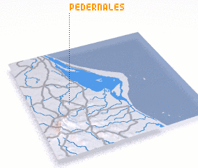 3d view of Pedernales