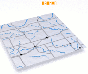 3d view of Hammon