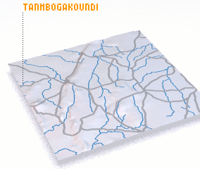 3d view of Tanmbogakoundi