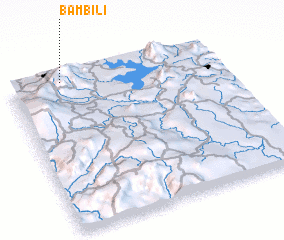 3d view of Bambili