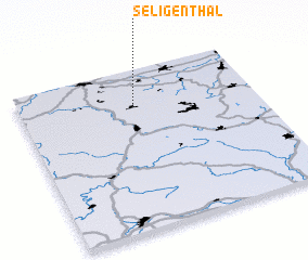 3d view of Seligenthal
