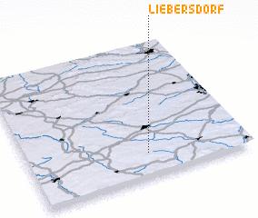 3d view of Liebersdorf