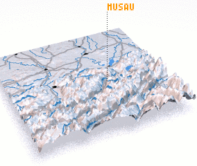 3d view of Musau