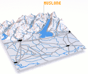 3d view of Muslone
