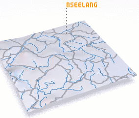 3d view of Nseelang