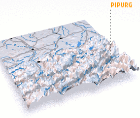 3d view of Pipurg