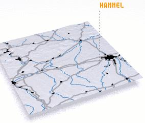 3d view of Hammel
