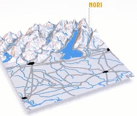 3d view of Mori