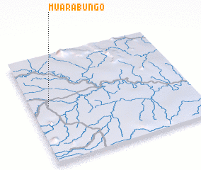 3d view of Muarabungo