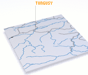 3d view of Tungusy