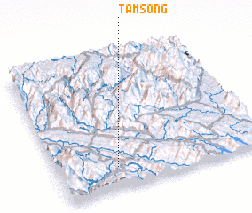 3d view of Tầm Song