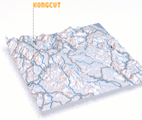 3d view of Kong Cut