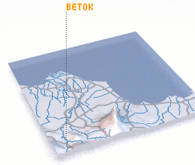 3d view of Betok