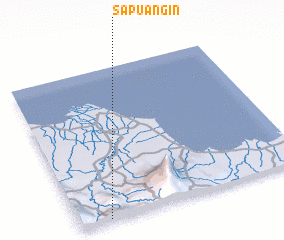 3d view of Sapuangin