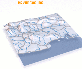 3d view of Payungagung
