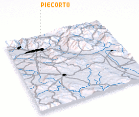 3d view of Piecorto