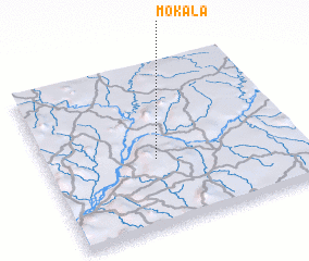 3d view of Mokala