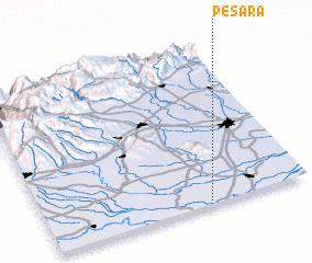 3d view of Pesara