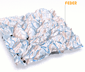 3d view of Feder