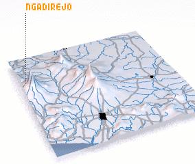 3d view of Ngadirejo