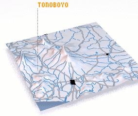 3d view of Tonoboyo