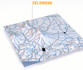 3d view of Selomirah