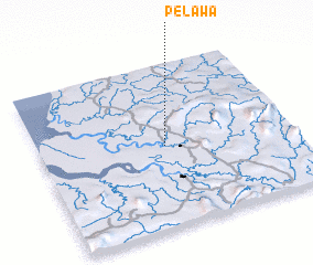 3d view of Pelawa