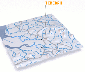 3d view of Temedak