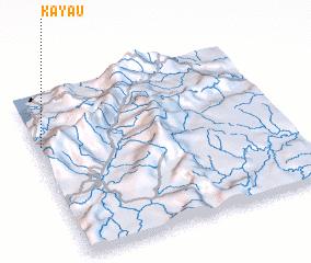 3d view of Kayau