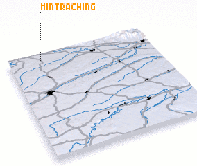 3d view of Mintraching