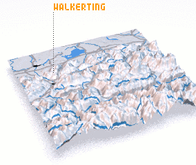 3d view of Walkerting