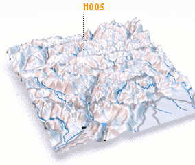 3d view of Moos