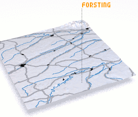 3d view of Forsting