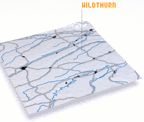 3d view of Wildthurn