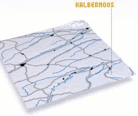 3d view of Kälbermoos