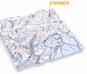 3d view of Stronach