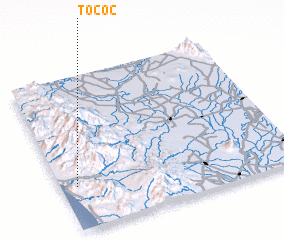 3d view of Tococ