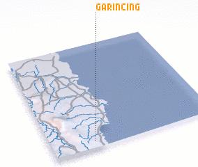 3d view of Garincing