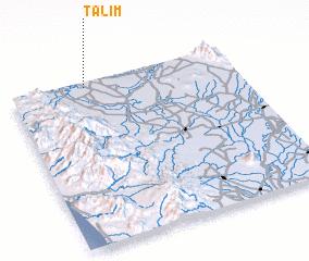 3d view of Talim