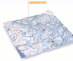 3d view of Carabaoan