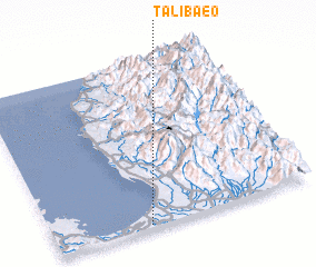 3d view of Talibaeo