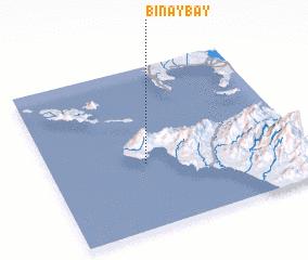 3d view of Binaybay