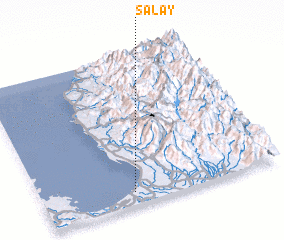 3d view of Salay