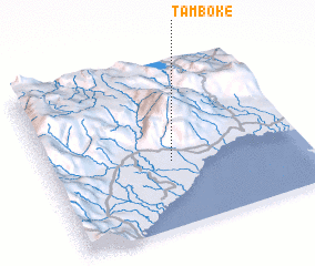 3d view of Tamboke