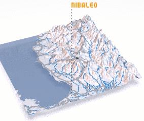 3d view of Nibaleo