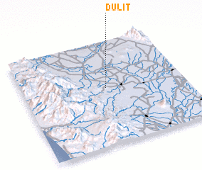 3d view of Dulit