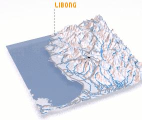 3d view of Libong