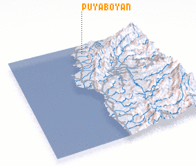 3d view of Puyaboyan