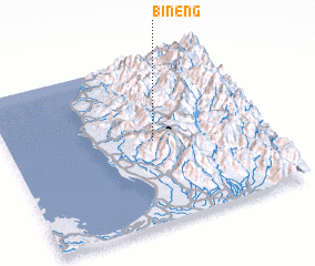 3d view of Bineng